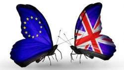 Articles - UK-EU butterflies